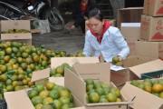 Tuyên Quang nâng tầm nông sản