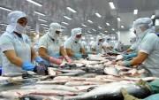Thủy sản được mùa, giá cá tra cao kỷ lục