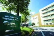 Carlsberg- Kế thừa, phát triển các thương hiệu bia thuần Việt