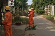 Trà Vinh: Phấn đấu 100% hộ dân có điện an toàn