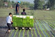 Đánh thức giá trị nông sản