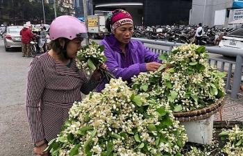 cuoi mua hoa buoi tang gia chat den hon 100000 donglang