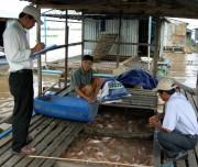 Phát triển nuôi cá rô phi cần gắn với tiêu thụ