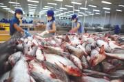 90% cá tra bán tại Mỹ nhập khẩu từ Việt Nam