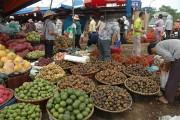 Hà Nội: Tăng chuỗi cung ứng thực phẩm an toàn