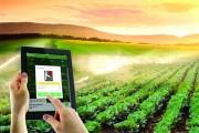Khởi nghiệp trong nông nghiệp: Vượt qua tâm lý sợ rủi ro