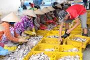 Bình Định: Đổi mới xây dựng đề án khuyến công