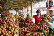 Bộ Công Thương: Tích cực hỗ trợ doanh nghiệp xúc tiến hàng Việt