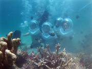 Nha Trang: Đi bộ dưới biển hấp dẫn du khách
