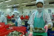 Xuất khẩu thủy sản: Tăng trưởng trong gian khó
