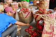 Các tỉnh, thành phố phía Nam: Xúc tiến đẩy mạnh tiêu thụ nông sản