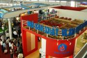 Xuất khẩu sản phẩm thương hiệu Việt: Kinh nghiệm hay từ doanh nghiệp