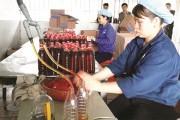 Khuyến công Nghệ An: Khuyến khích phát triển làng nghề