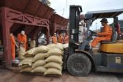 Giải pháp nâng tầm gạo Việt