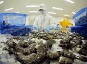 Australia nới lỏng lệnh tạm nhập khẩu tôm