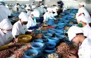 Xuất khẩu thực phẩm vào Hoa Kỳ: Chủ động để tránh rủi ro