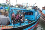 Xuất khẩu cá ngừ tăng trưởng ấn tượng