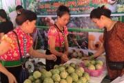 Đánh thức tiềm năng nông sản Sơn La