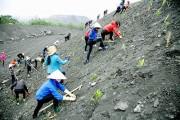 Phí thẩm định phương án cải tạo môi trường tối đa 61 triệu đồng
