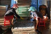 An toàn thực phẩm tại các làng nghề: Vẫn còn bỏ ngỏ