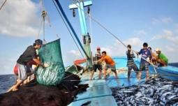 Vi phạm trong hoạt động thủy sản phạt đến 2 tỷ đồng
