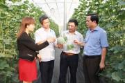 Phát triển nông nghiệp công nghệ cao ở Tây Nguyên: Cần có lộ trình