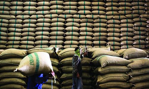 Xuất khẩu gạo tiếp tục phụ thuộc vào Trung Quốc