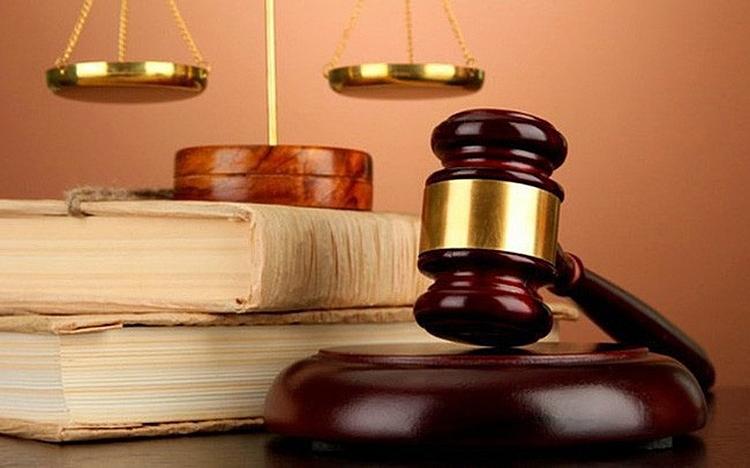 12 Luật có hiệu lực từ 1/7/2020