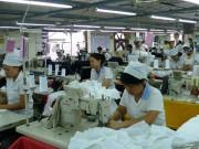 Hợp tác vì quyền lợi người lao động