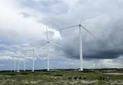 Tiềm năng đầu tư vào lĩnh vực năng lượng tái tạo tại An-giê-ri