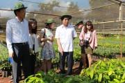 """Đắk Lắk: """"Đất lành"""" của nhà đầu tư Hàn Quốc"""