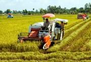 Hỗ trợ cơ giới hóa, giảm tổn thất trong nông nghiệp
