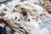Xuất khẩu mực, bạch tuộc sang thị trường Hàn Quốc nhiều triển vọng