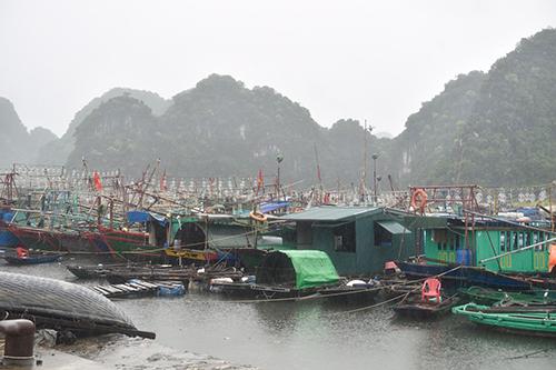 chuan bi ky phuong an ung pho bao so 3 dac biet hoan luu bao