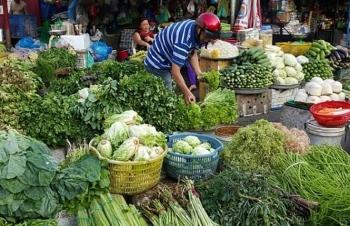 rau xanh duoc du bao khan hiem sau mua lu