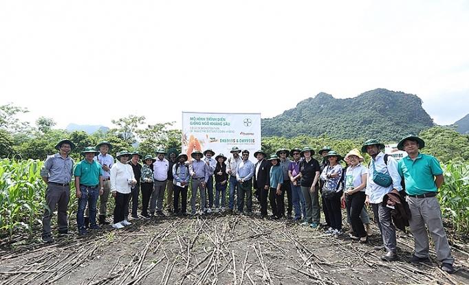 Nhiều chuyên gia quốc tế tới Việt Nam tìm hiểu giải pháp phòng trừ sâu keo mùa thu hiệu quả - Ảnh 3