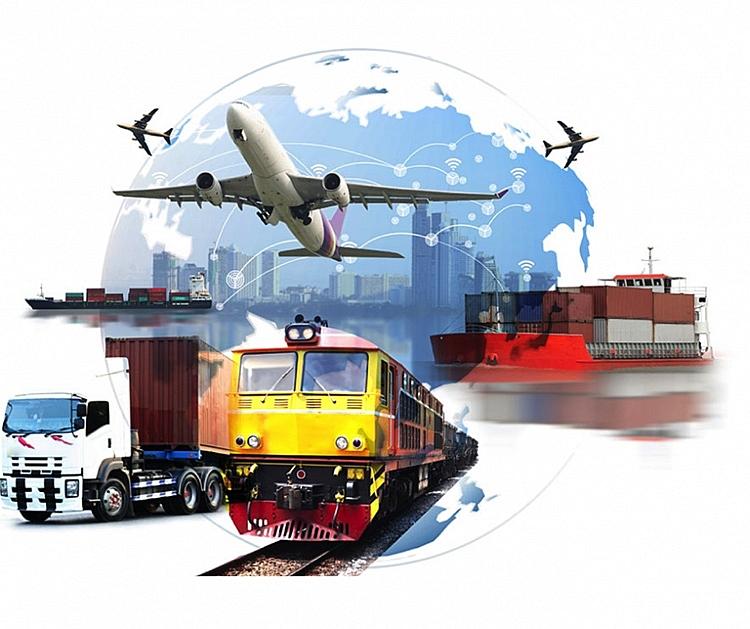 WTO thúc đẩy tạo thuận lợi thương mại cho vận chuyển hàng hóa chống Covid