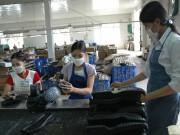 Đầu tư nguyên phụ liệu da giày: Tồn tại nhiều bất cập