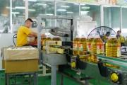 Quảng Ninh: Sản xuất công nghiệp khởi sắc