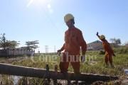 Điện lực miền Trung toàn lực cùng Quảng Bình