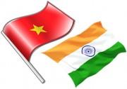 AITIG: Thúc đẩy hợp tác kinh tế Việt Nam - Ấn Độ