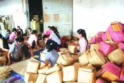 Khuyến công Ninh Bình: Chủ động hỗ trợ cơ sở công nghiệp nông thôn