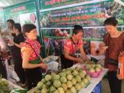 Nông sản an toàn Sơn La tại Hà Nội: Cam kết tiêu thụ