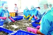 Hiệp định FTA Việt Nam - EU: Rộng cửa xuất khẩu cho thủy sản Việt Nam vào EU
