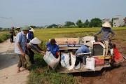 Xây dựng nông thôn mới tỉnh Bắc Giang: Thực hiện vững chắc, bảo đảm hiệu quả