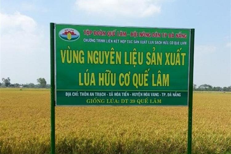 """Tập đoàn Quế Lâm: Từ phân bón hữu cơ đến gạo """"sạch"""""""
