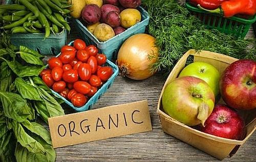 Nhiều sản phẩm organic có giá đắt đỏ vẫn được đặt mua nhiều.