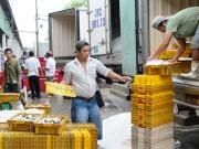 Xuất khẩu thủy sản: Giảm mạnh cả lượng và giá