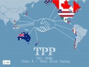 Hội nhập không phụ thuộc vào TPP