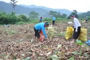 Huyện Bình Liêu (Quảng Ninh): Chú trọng nâng cao thu nhập cho người dân